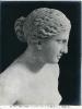 Musei Vaticani - Venere detta di Gnidia - (Roma)  710-937 ©Schiavo-Febbrari