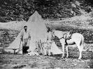 Il Re Vittorio Emanuele II in posa davanti alla sua tenda nel parco del Gran Paradiso