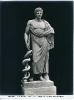 Musei Vaticani - Esculapio - (Roma)  749-976 ©Schiavo-Febbrari