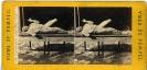 Stereo Italia 733 - Pompei - ©Schiavo-Febbrari