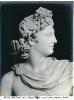 Musei Vaticani - Apollo di Belvedere - (Roma)  732-959 ©Schiavo-Febbrari
