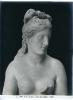 Museo Capitolino -Venere detta Capitolina - (Roma)  738-965 ©Schiavo-Febbrari