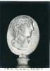 Museo nel Palazzo Piombino - Medusa morente - (Roma)  744-971 ©Schiavo-Febbrari